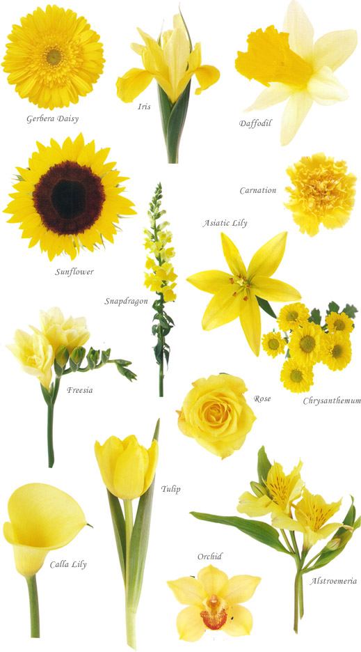 Yellow flowers at wedding : Yellow flower arrangements bouquets on