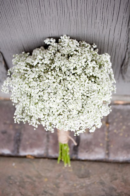 Trend Alert Baby S Breath Engaged Events