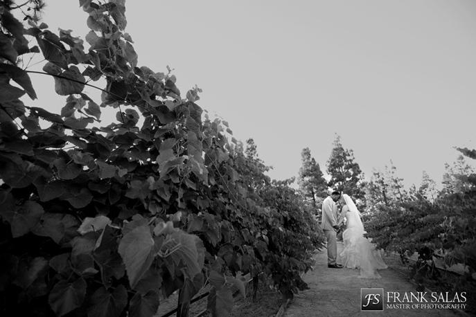 turnip rose promenade wedding 24